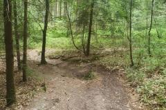 Auf dem nächsten Single-Trail gehts bergab